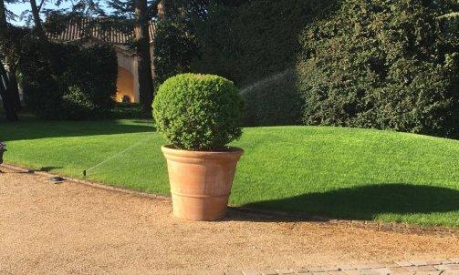 Flore & Sens entretien d'espaces verts à Denicé